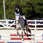 Inwood Hunter Jumper Show Horses Bermuda Equestrian, November 25 2012 (32)
