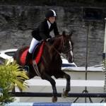 Inwood Hunter Jumper Show Horses Bermuda Equestrian, November 25 2012 (36)