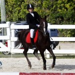 Inwood Hunter Jumper Show Horses Bermuda Equestrian, November 25 2012 (40)