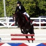 Inwood Hunter Jumper Show Horses Bermuda Equestrian, November 25 2012 (42)