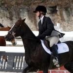 Inwood Hunter Jumper Show Horses Bermuda Equestrian, November 25 2012 (48)