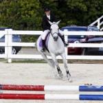 Inwood Hunter Jumper Show Horses Bermuda Equestrian, November 25 2012 (5)