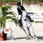 Inwood Hunter Jumper Show Horses Bermuda Equestrian, November 25 2012 (8)