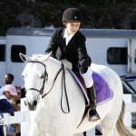Inwood Hunter Jumper Show Horses Bermuda Equestrian, November 25 2012 (9)