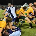 australia v italy rugby (11)