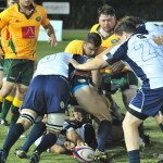 australia v italy rugby (18)
