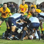 australia v italy rugby (2)