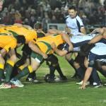 australia v italy rugby (23)