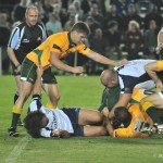 australia v italy rugby (29)