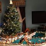 Resendes Family Portuguese Presepio Nativity Scene Christmas Bermuda, December 23 2012 (1)