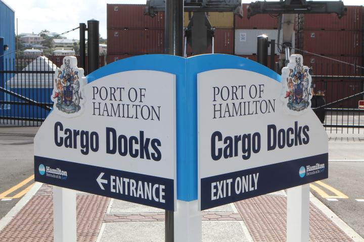 docks hamilton generic