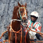 DHPC Harness Pony Racing, Bermuda January 13 2013 (10)