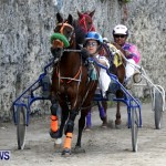 DHPC Harness Pony Racing, Bermuda January 13 2013 (11)