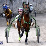DHPC Harness Pony Racing, Bermuda January 13 2013 (15)