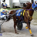 DHPC Harness Pony Racing, Bermuda January 13 2013 (17)