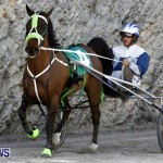 DHPC Harness Pony Racing, Bermuda January 13 2013 (18)