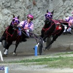 DHPC Harness Pony Racing, Bermuda January 13 2013 (19)
