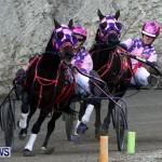 DHPC Harness Pony Racing, Bermuda January 13 2013 (20)