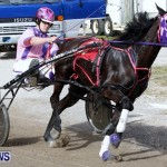 DHPC Harness Pony Racing, Bermuda January 13 2013 (22)