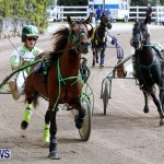 DHPC Harness Pony Racing, Bermuda January 13 2013 (25)