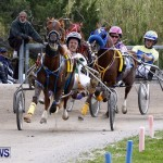 DHPC Harness Pony Racing, Bermuda January 13 2013 (26)