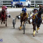DHPC Harness Pony Racing, Bermuda January 13 2013 (27)