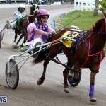 DHPC Harness Pony Racing, Bermuda January 13 2013 (28)