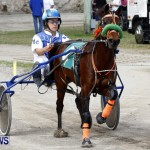 DHPC Harness Pony Racing, Bermuda January 13 2013 (3)