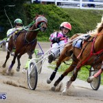 DHPC Harness Pony Racing, Bermuda January 13 2013 (31)