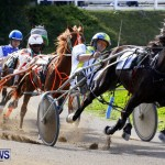 DHPC Harness Pony Racing, Bermuda January 13 2013 (33)
