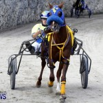 DHPC Harness Pony Racing, Bermuda January 13 2013 (4)