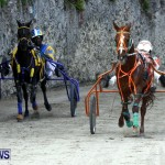 DHPC Harness Pony Racing, Bermuda January 13 2013 (5)