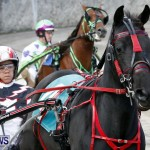 DHPC Harness Pony Racing, Bermuda January 13 2013 (9)