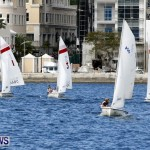 Frostbite Series Sailing Sailboat  Hamilton Harbour Bermuda, January 6 2013 (1)