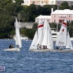 Frostbite Series Sailing Sailboat  Hamilton Harbour Bermuda, January 6 2013 (11)