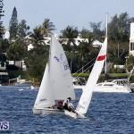 Frostbite Series Sailing Sailboat  Hamilton Harbour Bermuda, January 6 2013 (12)