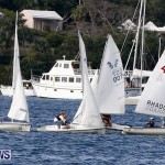 Frostbite Series Sailing Sailboat  Hamilton Harbour Bermuda, January 6 2013 (13)