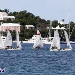 Frostbite Series Sailing Sailboat  Hamilton Harbour Bermuda, January 6 2013 (14)