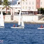 Frostbite Series Sailing Sailboat  Hamilton Harbour Bermuda, January 6 2013 (17)