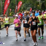 HSBC  Bermuda Marathon Weekend half-marathon and marathon, January 20 2013 (106)