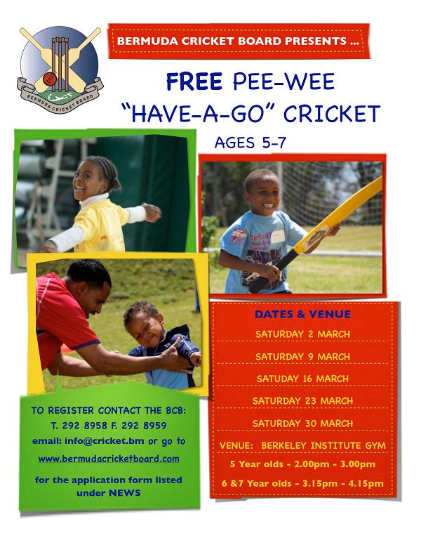 Pee-Cricket-Poster-2013