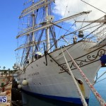 Training Tall Ship Christian Radich, St George's Bermuda, January 15 2013 (33)