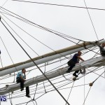 Training Tall Ship Christian Radich, St George's Bermuda, January 15 2013 (5)
