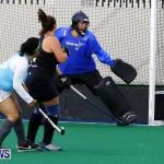 Womens Hockey Bermuda, January 13 2013 Ravens vs Budgies (4)