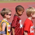 2013 telford mile race bermuda (10)