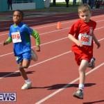 2013 telford mile race bermuda (103)