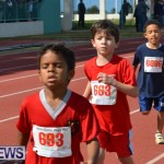 2013 telford mile race bermuda (105)