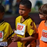 2013 telford mile race bermuda (113)