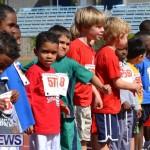 2013 telford mile race bermuda (12)