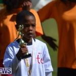 2013 telford mile race bermuda (134)